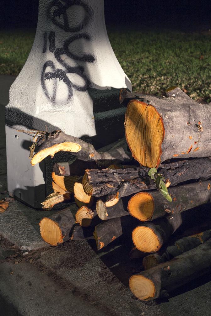 Cut Log 2